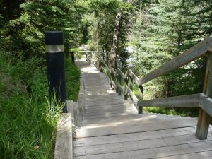 Steps down to the Bow River