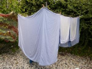 Solar dryer- privacy mode